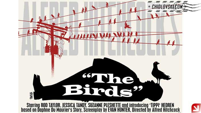 birds-poster-002
