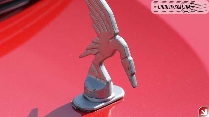thundrbird-logo