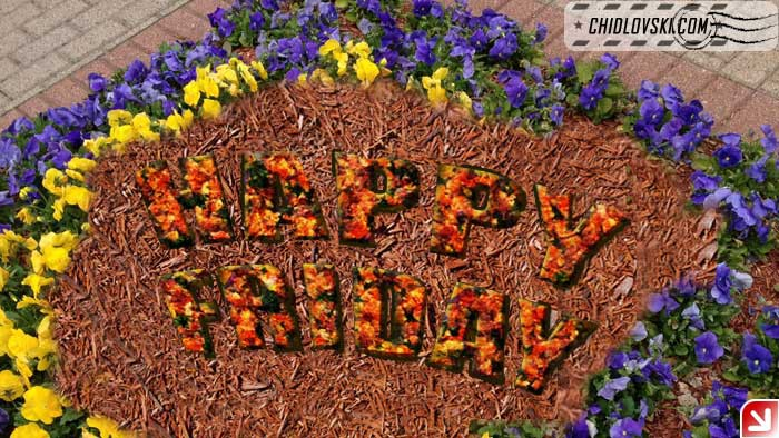 happy-friday-flowers