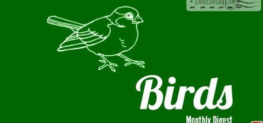digest-birds