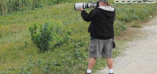 birdwatchers-003