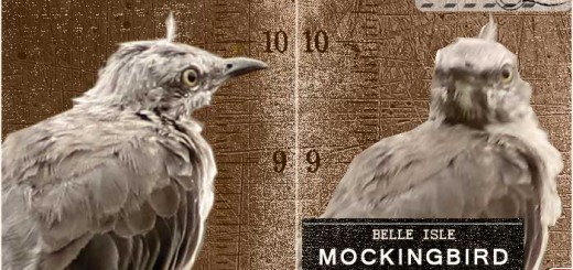 mocking-08-cover