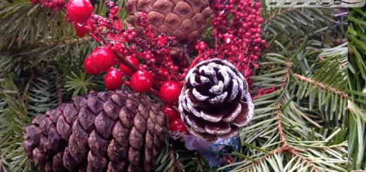 holiday-season-2015-001