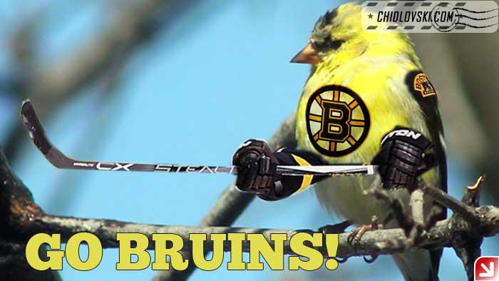 Go Bruins!