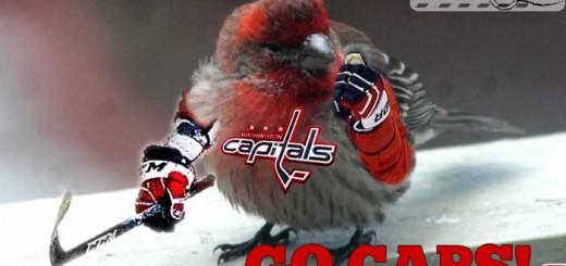 birds-go-caps