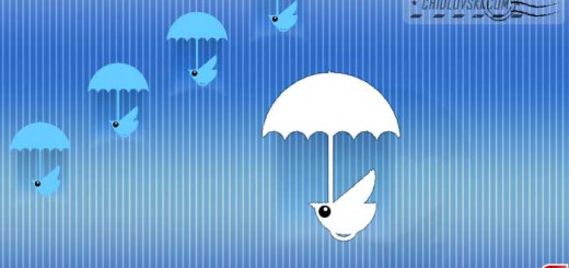 birds-in-rain