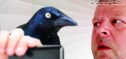 selfie-with-grackle