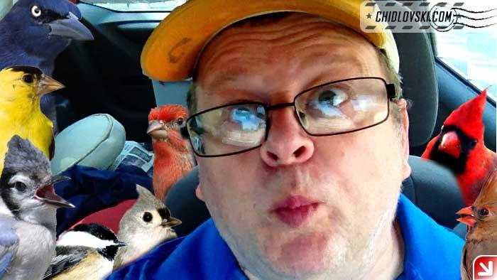 selfie-birds