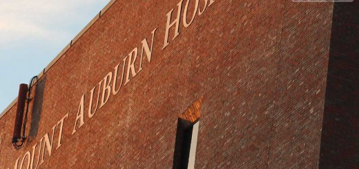mount-auburn-b008